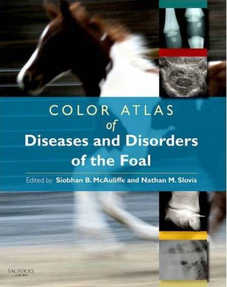 Color Atlas Of Diseases And Disorders Of The Foal 1st Edition