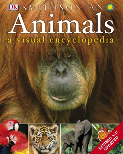 Animals A Visual Encyclopedia
