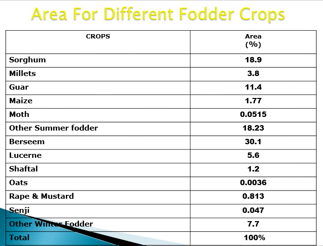 Fodder crops in Pakistan 2019