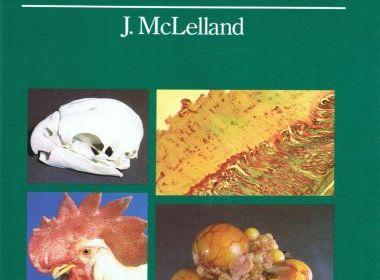 A Colour Atlas Of Avian Anatomy