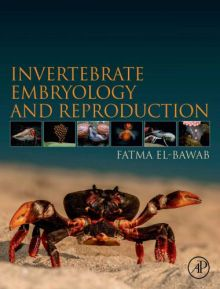 Invertebrate Embryology And Reproduction