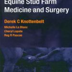 Equine Stud Farm Medicine And Surgery