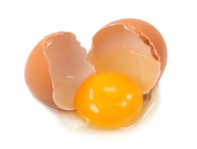 Factor Affection Egg Quality And Egg Production