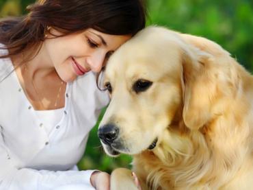 Tips Para Animales De Compañia