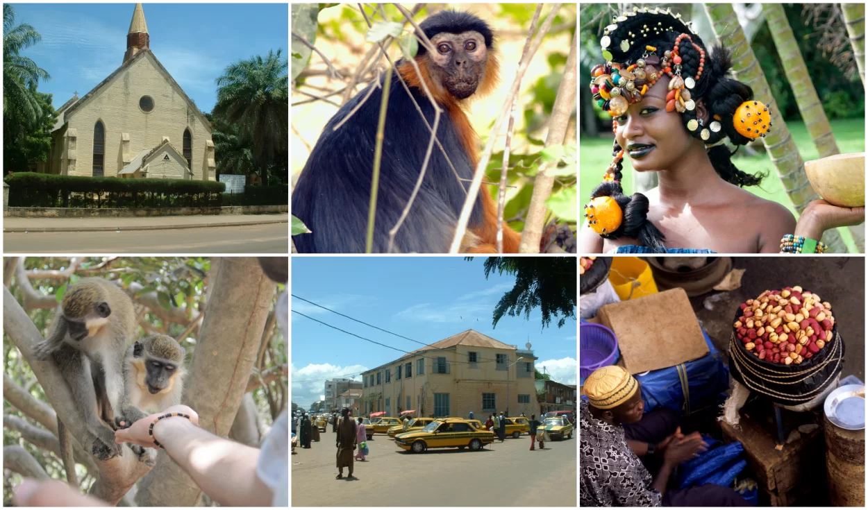 Collagegambia