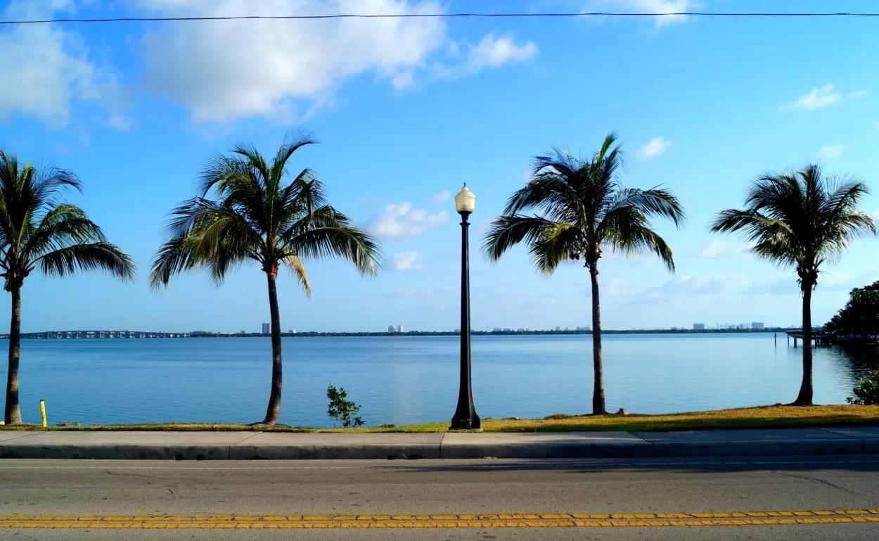 Miami44
