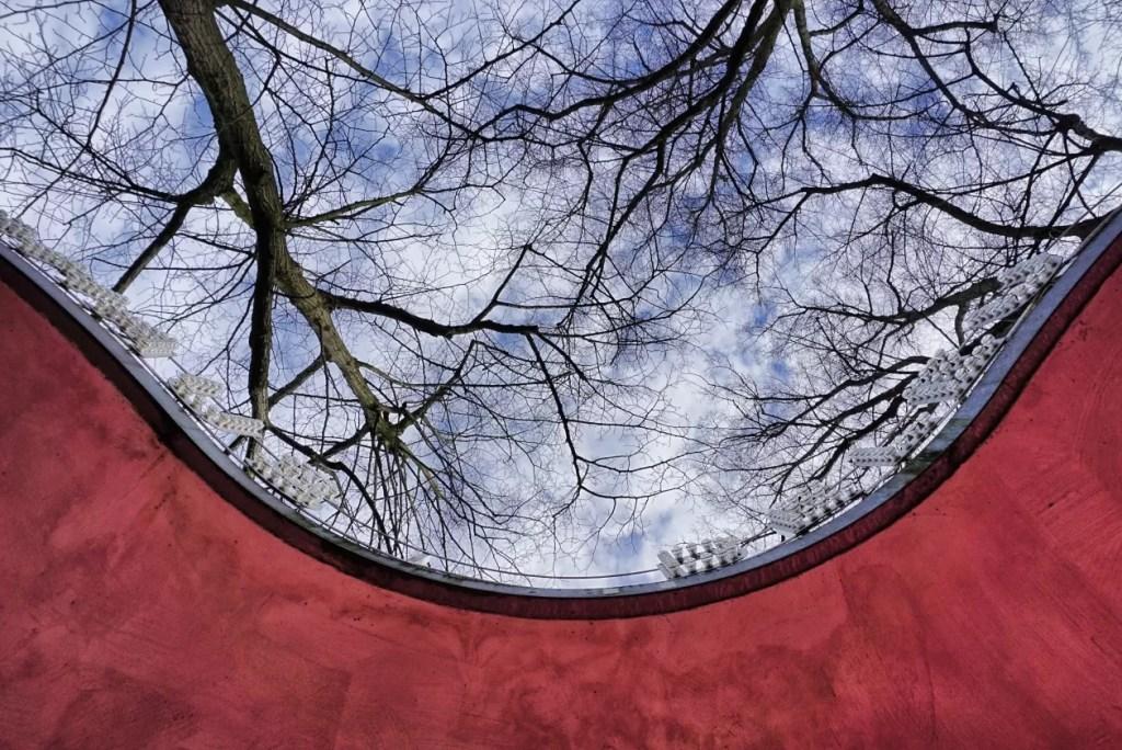 Bezoek aan Middelheimmuseum mag niet op planning ontbreken