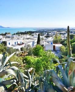 Sidi Bou Said Tunesië blauw wit huisje straat panorama