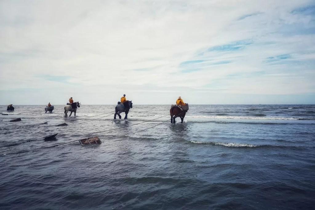 Koksijde-Oostduinkerke: meer dan enkel flaneren op de dijk