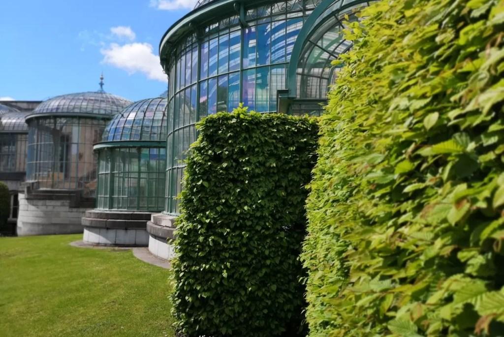 Koninklijke serres in Laken (fotospecial)