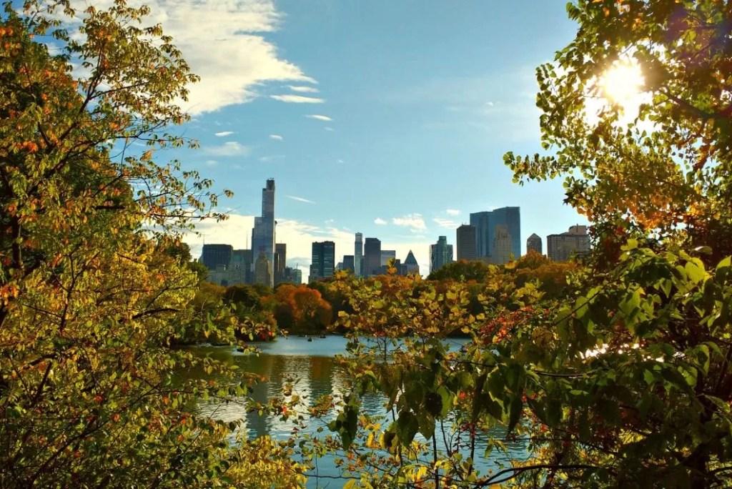 6 New Yorkse klassiekers voor je eerste bezoek