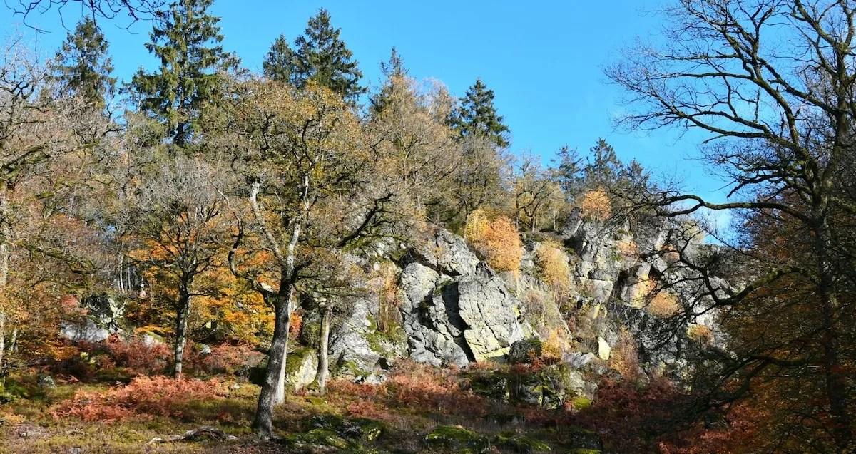 3 x prachtige natuurfenomenen in Wallonië die je gratis kan bewonderen