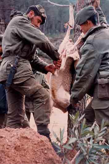 Matanza de cordero en prácticas de supervivencia en la COE