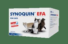 Synoquin EFA Cat
