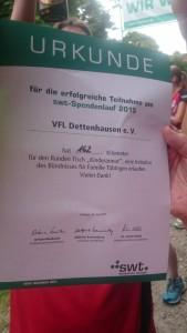 SWT-Lauf 2015 Urkunde