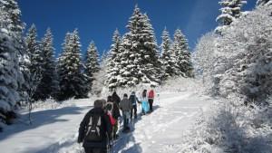 Schneeschuhwandern am Feldberg @ Feldberg (Schwarzwald) | Baden-Württemberg | Deutschland