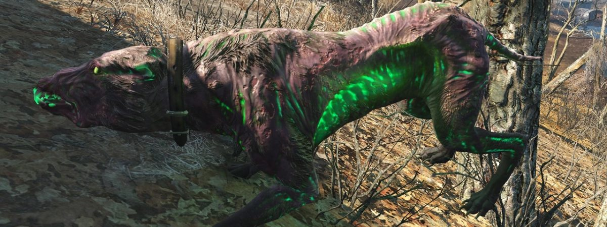 Beasts Of West Virginia The Snarly Yow In Fallout 76