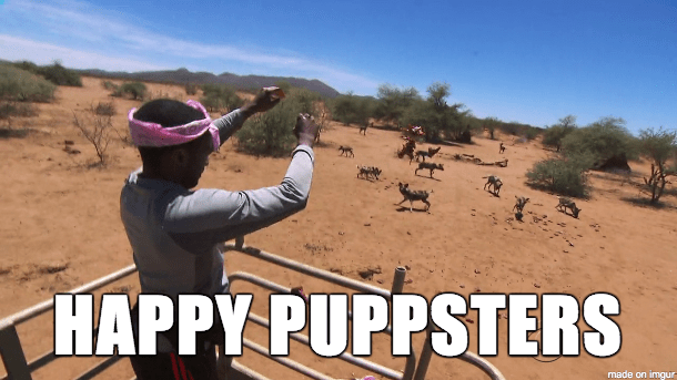 happypuppsters
