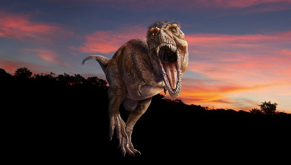 Experience T-Rex in immersive virtual reality at the american museum of natural history