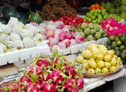 東南アジア トロピカルフルーツ おすすめ