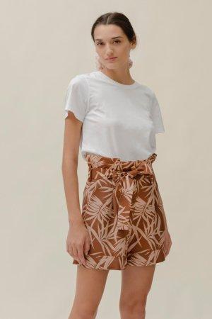 Candy Shorts Palm Safari