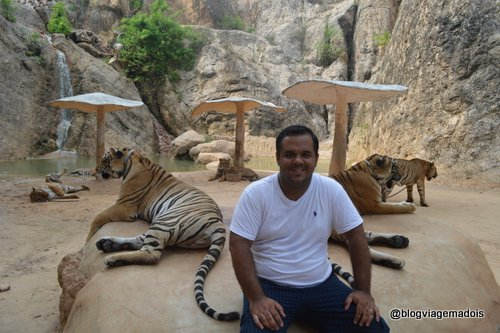 Luciano com os tigres
