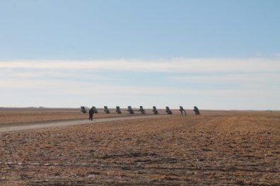 Cadillac Ranch, Amarillo