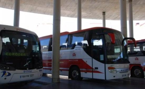 Avanzabus, muoversi in Spagna con gli autobus