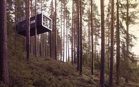 Tree Hotel, dormire sugli alberi nella Lapponia Svedese