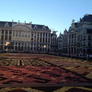 Flower Carpet a Bruxelles, evento di fiori