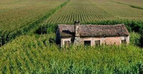 Polesine, tour a Rovigo tra ville, chiese e fattorie didattiche