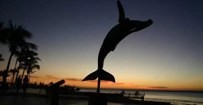 Capodanno in Messico, Barrancas del Cobre e le balene della Baja California