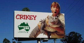 Australia Zoo: il paradiso degli animali