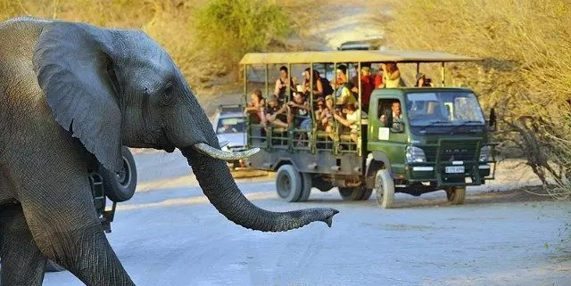 Come muoversi in Botswana, Africa