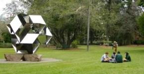 Cosa fare a Brisbane, i parchi all'aperto