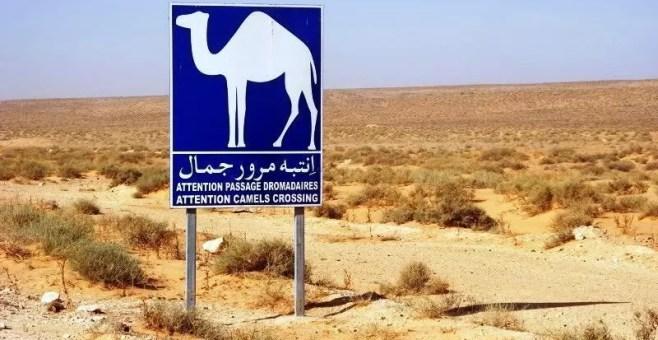 Viaggiare nel deserto, i limiti in Tunisia