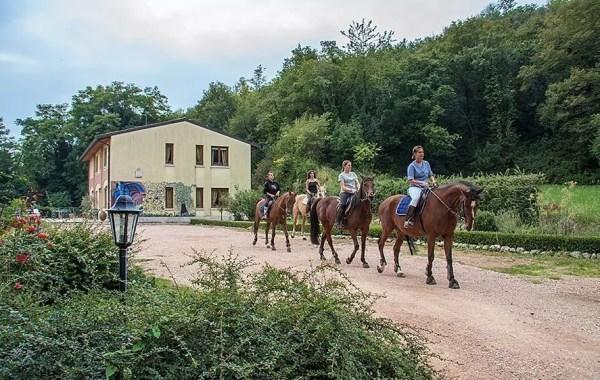 Soggiornare in Valpolicella-Verona: Agriturismo Altobello