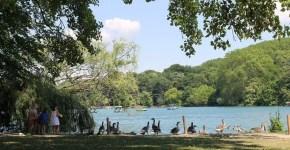 Lione con bambini: 3 parchi da vedere
