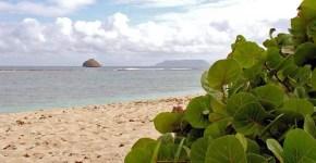 Viaggio a Guadalupa, la farfalla dei Caraibi