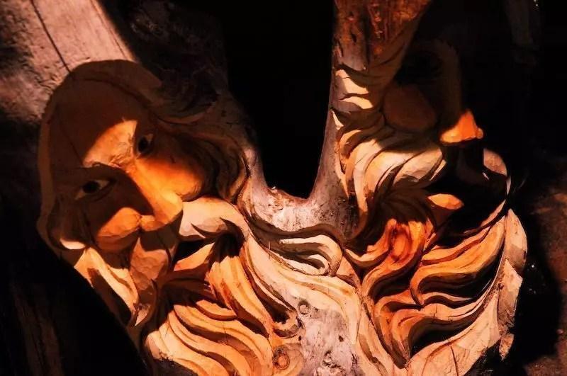 Facce nel tronco