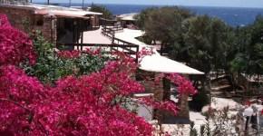 Villaggio La Roccia, oasi di verde a Lampedusa
