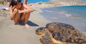 5 cose da fare a Lampedusa