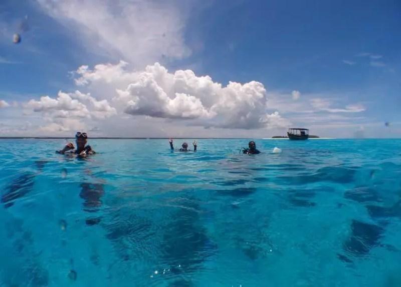 zanzibar-Mnemba-snorkeling