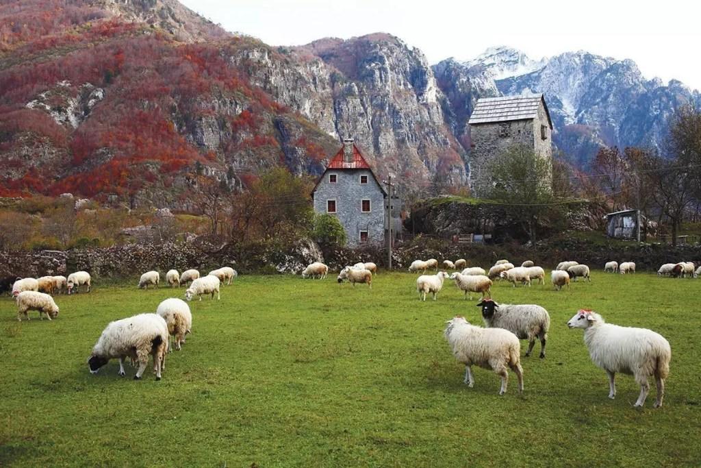 albania-zone-rurali