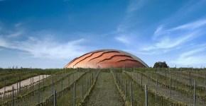 Umbria, tour per Cantine: prezzi e degustazioni