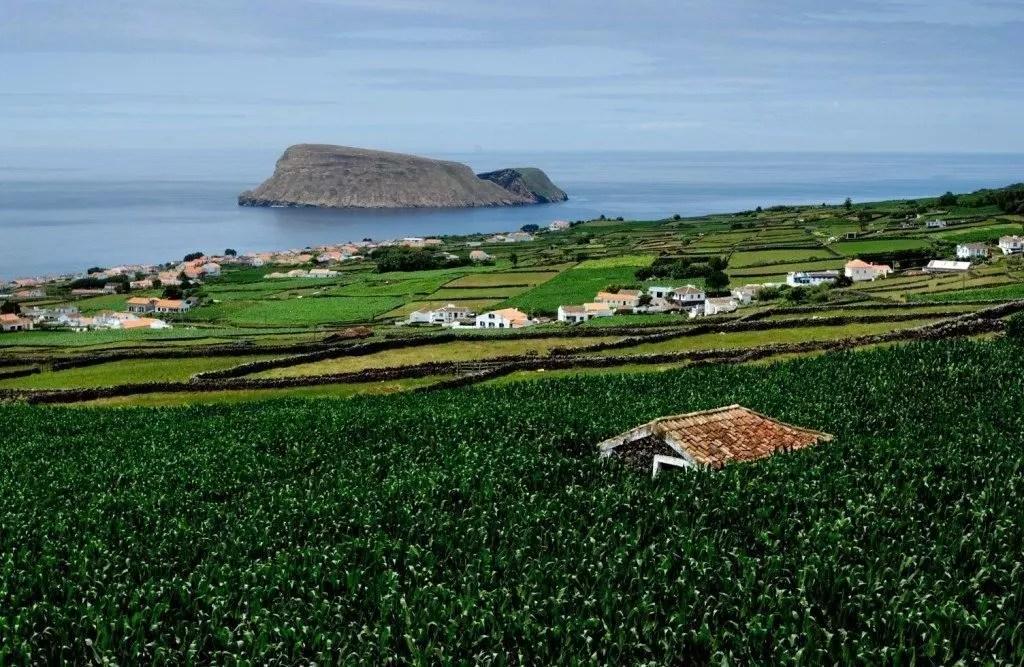 NunoDias.Fotografia