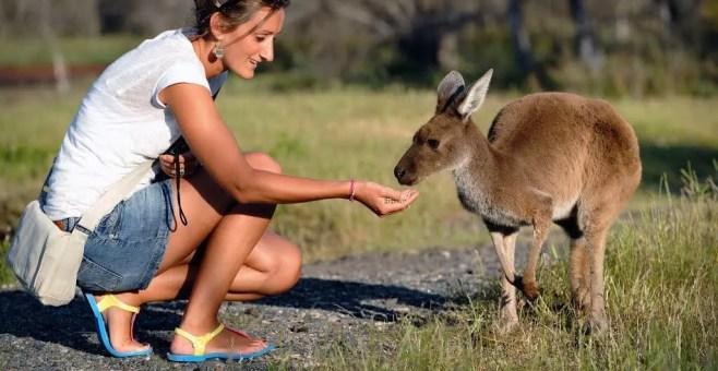 Perth, cosa vedere in Australia