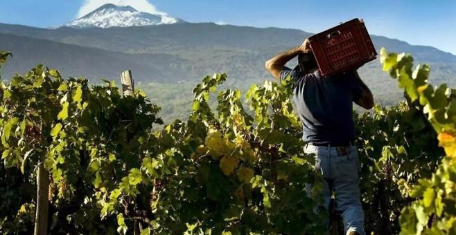 5 cose da fare se vai sull'Etna