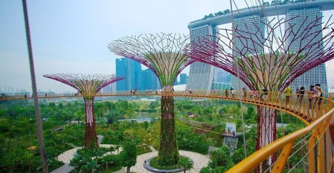 Gardens by the Bay, il parco magico di Singapore