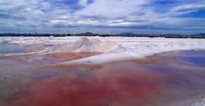 San Pedro del Pinatar: curiosità e Parco Naturale delle Saline
